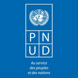 Member - PNUD